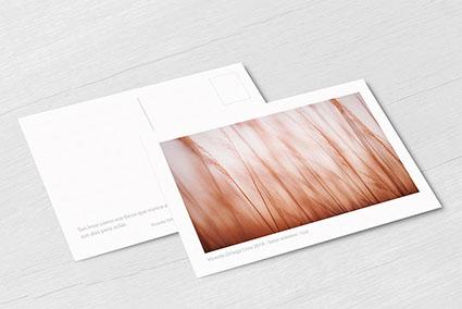 Postcard Mockup 3